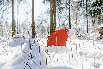 Nikolausmütze im verschneiten Wald - p586m2005084 von Kniel Synnatzschke