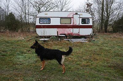 Caravan - p9270029 by Florence Delahaye