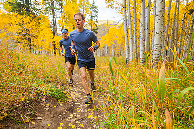 Men trail run through aspen forest with fall color in Vail, Colorado - p1166m2137898 by Cavan Images