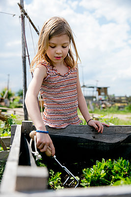 Raised bed - p1212m1146008 by harry + lidy