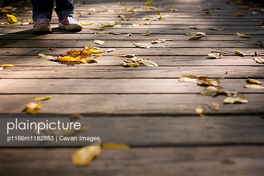 p1166m1182853 von Cavan Images