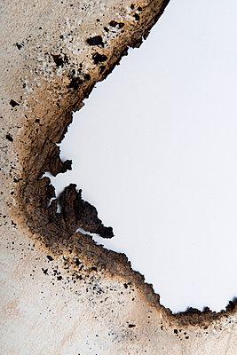 p451m1564585 by Anja Weber-Decker