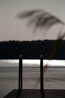 Bathing lake - p817m2016139 by Daniel K Schweitzer