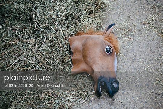 Horse - p1621m2216120 by Anke Doerschlen