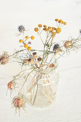 Trockenblumen in einem Einmachglas - p879m2295238 von nico