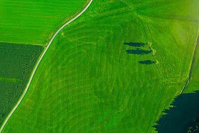 Germany, Chiemgau, Prien, field way and field in summer - p300m2081227 von Michael Malorny