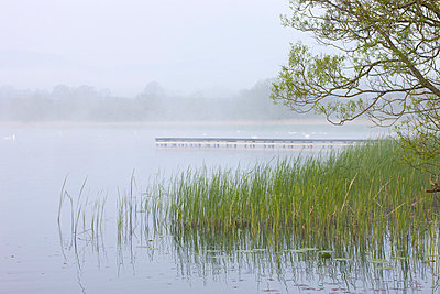 Early morning mist shrouds Llangorse Lake in the Brecon Beacons National Park, Powys, Wales, United Kingdom, Europe - p8713126 by Adam Burton