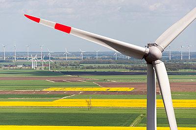 Windkraftanlage vor Rapsfeldern - p1079m1072940 von Ulrich Mertens