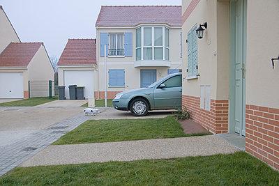 Plastikschwein in einem Wohngebiet - p1270m1108366 von Cécile Henryon