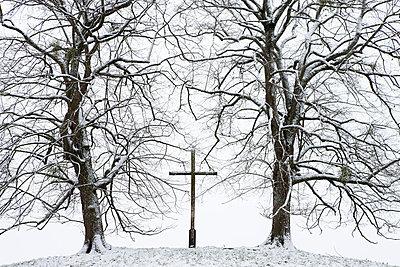 Friedhof im Winter - p7980101 von Florian Löbermann