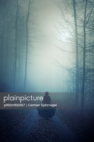 Alone in the fog - p992m892667 by Carmen Spitznagel