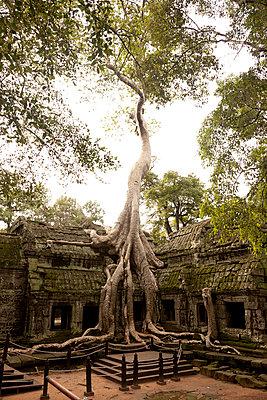 Angkor Wat - p631m913083 by Franck Beloncle