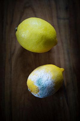 Verderbende Zitronen - p1657m2257719 von Kornelia Rumberg