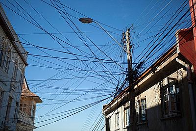 Network - p842m754602 by Renée Del Missier