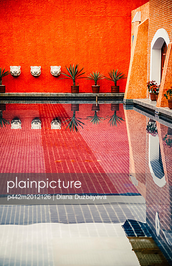 p442m2012126 von Diana Duzbayeva