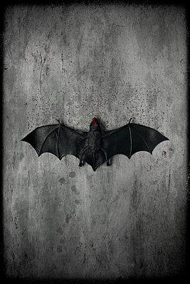Vampire - p1028m1492047 by Jean Marmeisse