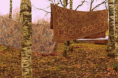 Carpets hanging on clothesline - p1063m2045323 by Ekaterina Vasilyeva