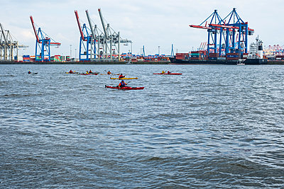 Canoeing on the elbe river - p858m1585046 by Lucja Romanowska