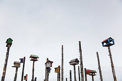 Birdhouses - p1477m1586418 by rainandsalt