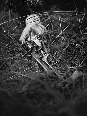 p1568m2135140 by Matthieu Burlin