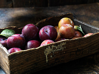 Fresh organic fruit, plums and apples - p429m1180956 by Diana Miller
