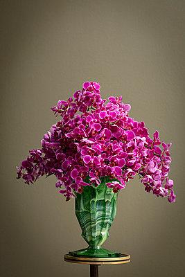 Üppiger Blumenstrauss aus pinkfarbenen Orchideen in grüner Vase - p948m2222846 von Sibylle Pietrek