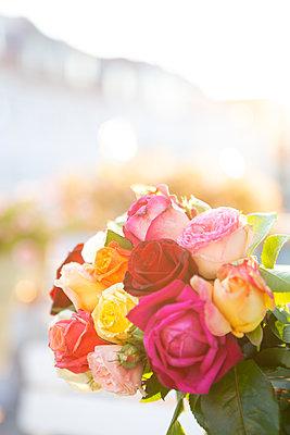 Summer roses - p454m2217376 by Lubitz + Dorner