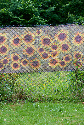 Sonnenblumen am Zaun - p1164m1039492 von Uwe Schinkel