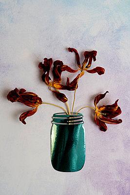 p451m2057840 by Anja Weber-Decker