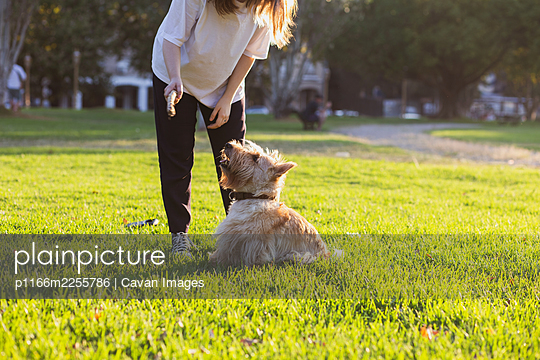 A girl plays with her dog in a Buenos Aires city park - p1166m2255786 by Cavan Images