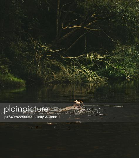 Man swimming in lake - p1640m2259957 by Holly & John