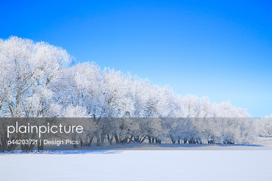 p4420372f von Design Pics
