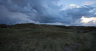 Grasdünenlandschaft mit dunkler Wolkenformation - p946m938949 von Maren Becker