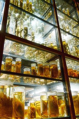 Proben in Gläsern mit Formaldehyd - p1154m2297730 von Tom Hogan