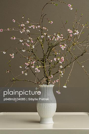 Weiße Vase mirt Verzierung auf einem weißen Tisch mit blühenden Kirschblütenzweig. - p948m2134085 von Sibylle Pietrek