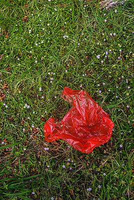 Red plastic bag on grass - p1427m2186368 by Tetra Images