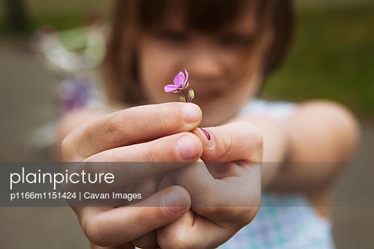 p1166m1151424 von Cavan Images