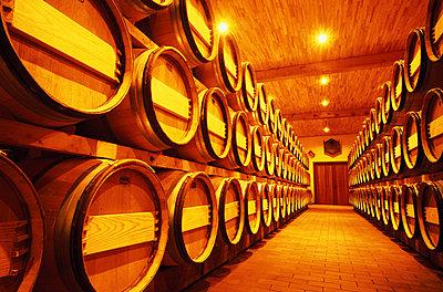 Wine cellar - p2681427 by Oliver Rüther