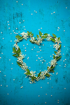 Elder flowers and leaves in heart shape on blue background - p300m2131743 by Achim Sass