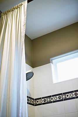 Detail shower curtain and showerhead - p555m738630f by Eric Hernandez