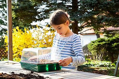 Girl covering her little greenhouse - p300m2180929 by Larissa Veronesi