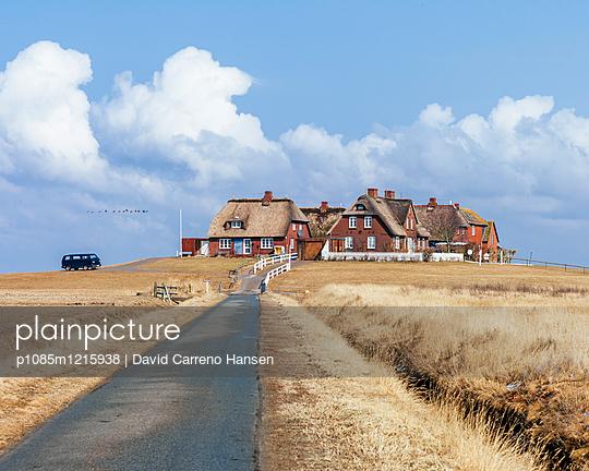Retthäuser auf einer Warft - p1085m1215938 von David Carreno Hansen