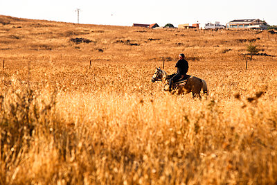 Israel, Man on a horse - p1643m2229346 by janice mersiovsky
