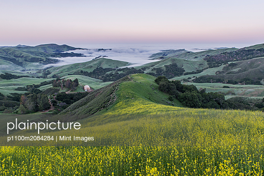 Rolling landscape viewed from grassy hilltop,rural, California, USA - p1100m2084284 by Mint Images