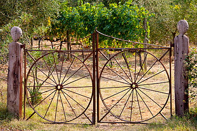 Farm gateway of wrought iron near Montalcino, Val D'Orcia, Tuscany, Italy - p871m895818 by Tim Graham