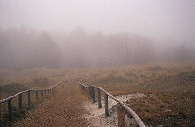 Wanderweg Nationalpark in der Vorpommersche Boddenlandschaft - p9791336 von Opelka