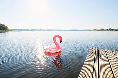 Flamingo - p464m2196591 von Elektrons 08