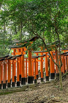 Fushimi Inari-taisha - p300m961744 by Hartmut Loebermann