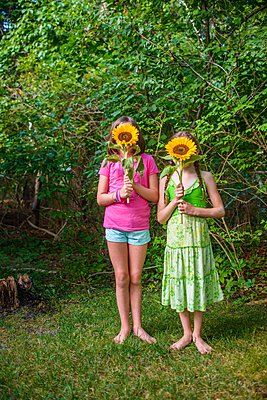 Two young girls holding sunflowers in front of faces - p924m1094785f by Sue Barr
