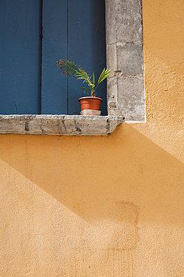 Windowsill - p971m947641 by Reilika Landen